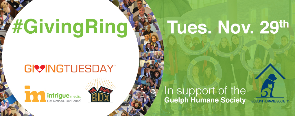 #GivingRing in support Giving Tuesday and Guelph Humane Society with Intrigue Media and the Making-Box