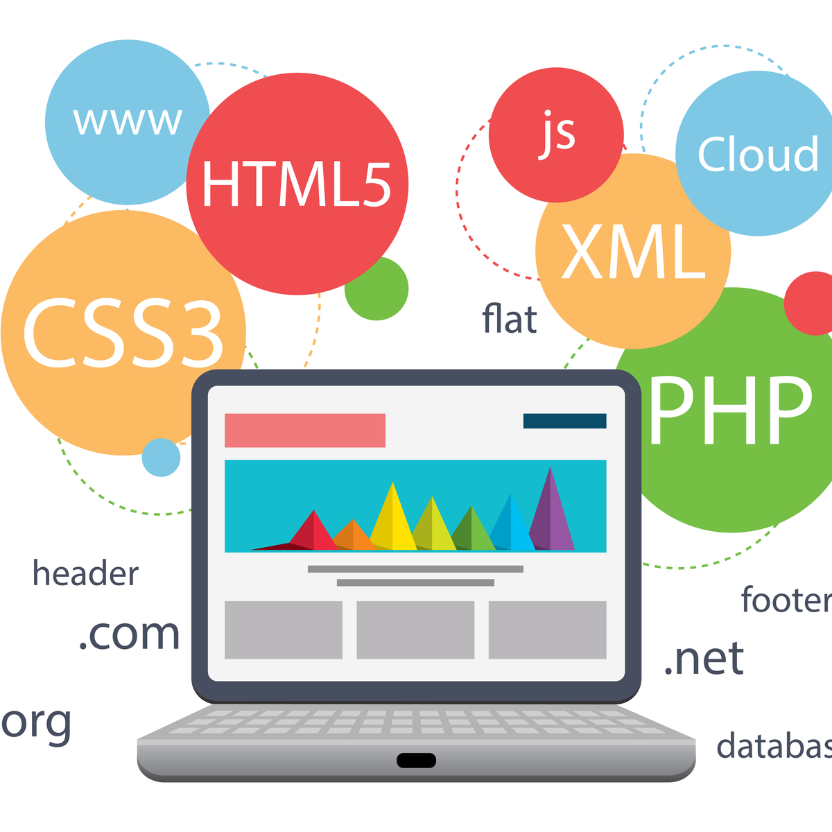 4 reasons you need a professional web design